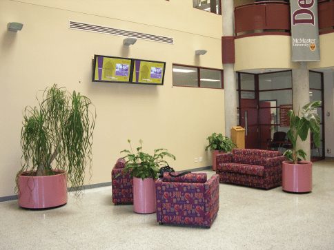 mcmaster university1